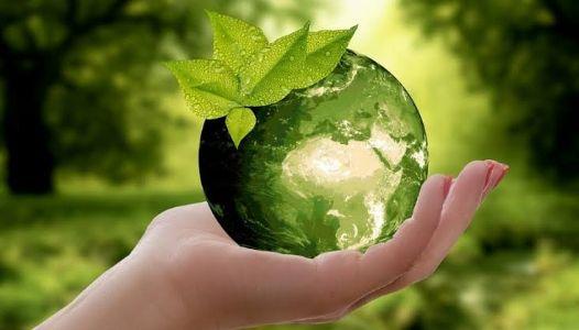 पर्यावरणातील घटकांची निवडणूक...