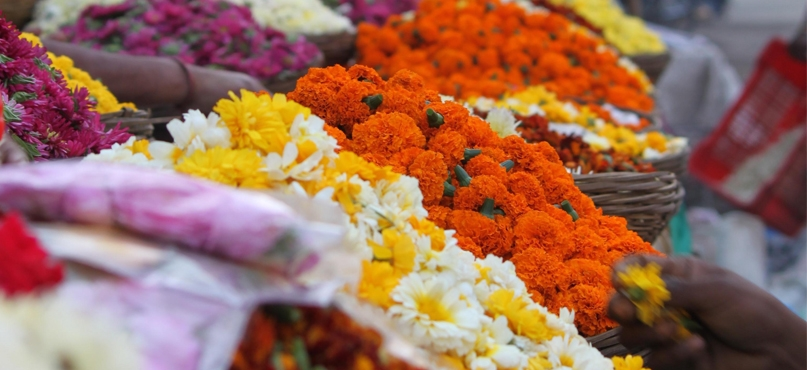 flower market_1&nbs
